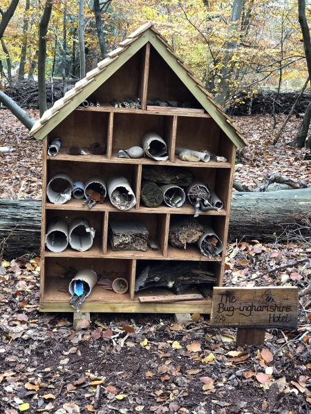 Photo ../admin/images/Gallery/Bug hotel 2.jpg